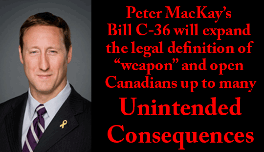 Justice-Minister-Peter-Mackays-Bill-C-36-Unintended-Consequences