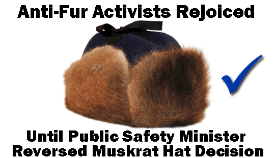 Anti-Fur-Activists-Rejoiced