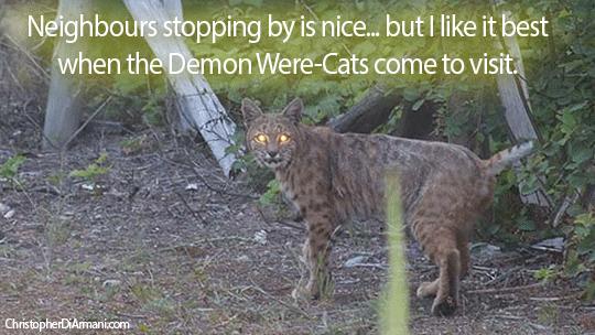 My-Demon-Were-Cats