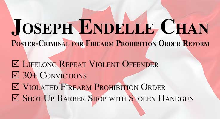Joseph Endelle Chan - Poster-Criminal for Firearm Prohibition Order Reform