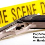 PolySeSouvient's Unassailable Logic on Handgun Bans