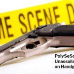 PolySeSouvient's Unassailable Logic on Handgun Bans