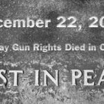 R. v. Wiles [2005] The Day Gun Rights Died in Canada
