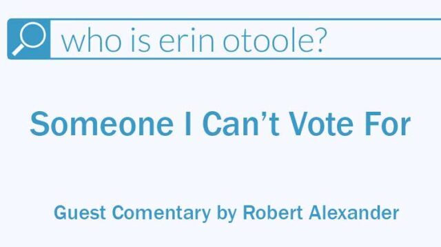 Erin O'Toole: Someone I can't vote for