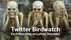 Twitter Birdwatch: Fact-Checking on Leftist Steroids?