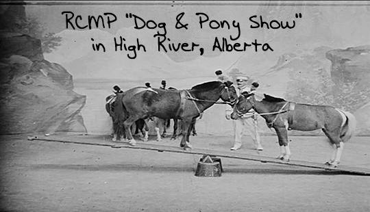 RCMP-Dog-and-Pony-Show