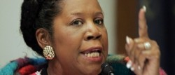 Congresswoman Sheila Jackson Lee wants your guns