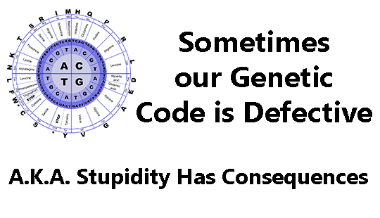 Stupidity-Has-Consequences