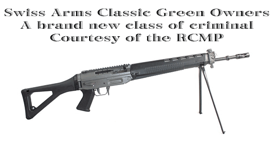 Swiss-Arms-Classic-Green-Rifle